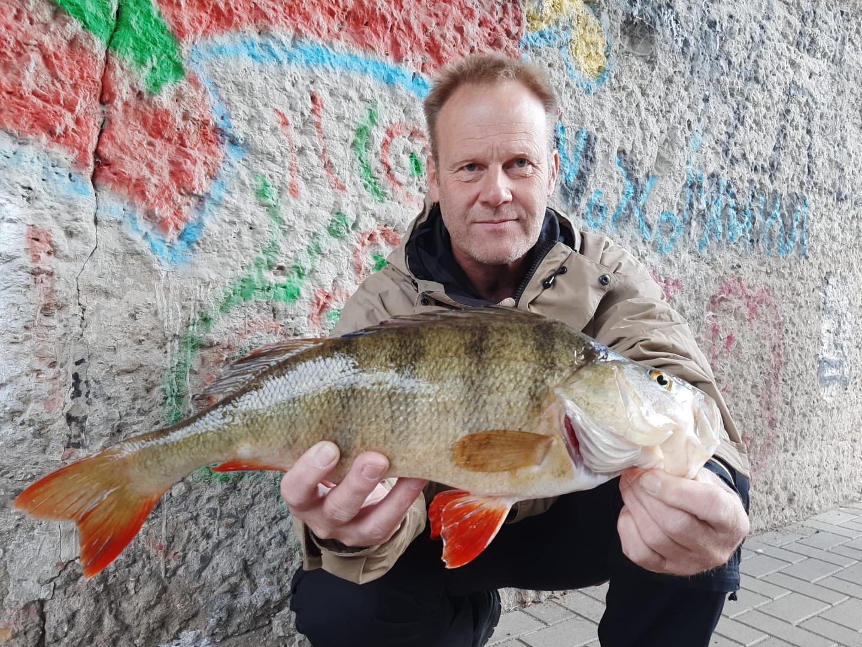Barsch 44cm, Kanal, 29.09.2020, Rainer Hungrecker